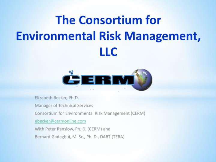 The consortium for environmental risk management llc