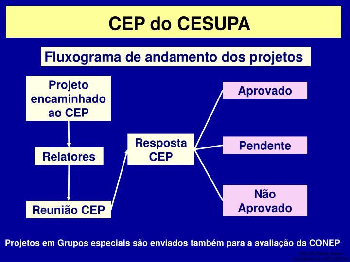CEP do CESUPA