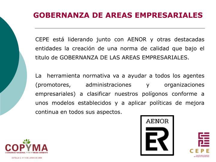 GOBERNANZA DE AREAS EMPRESARIALES