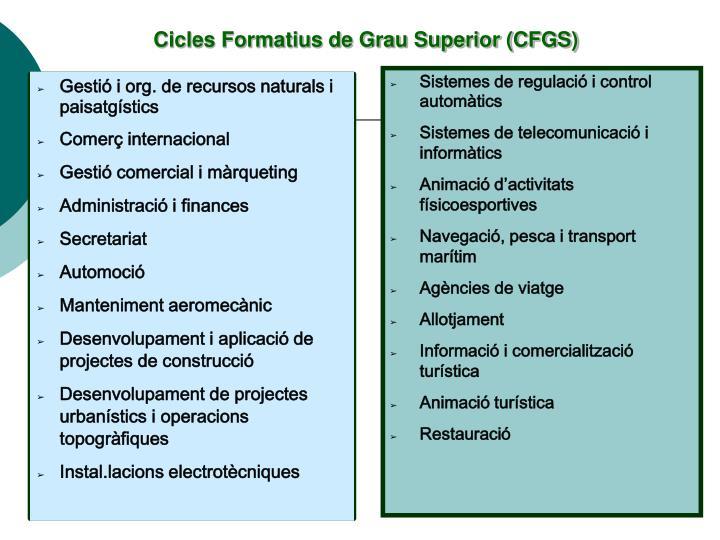 Cicles Formatius de Grau Superior (CFGS)