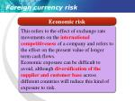 foreign currency risk3