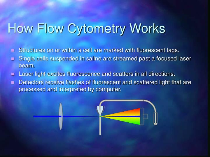 How Flow Cytometry Works