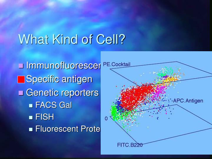 What Kind of Cell?