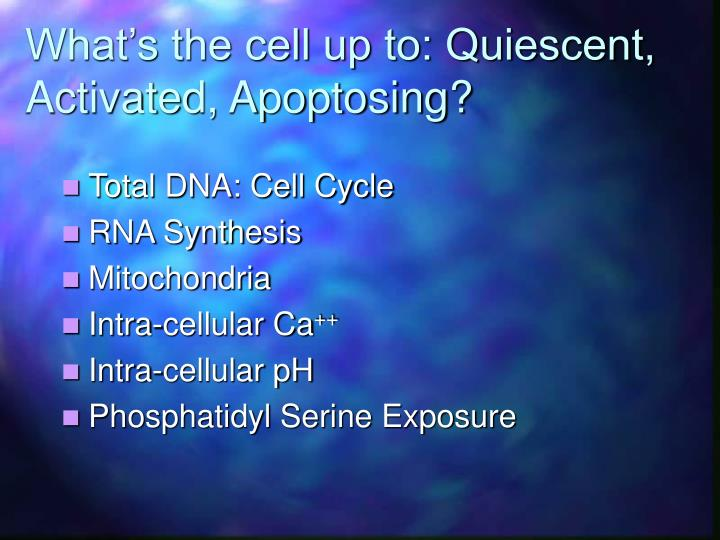 What's the cell up to: Quiescent, Activated, Apoptosing?