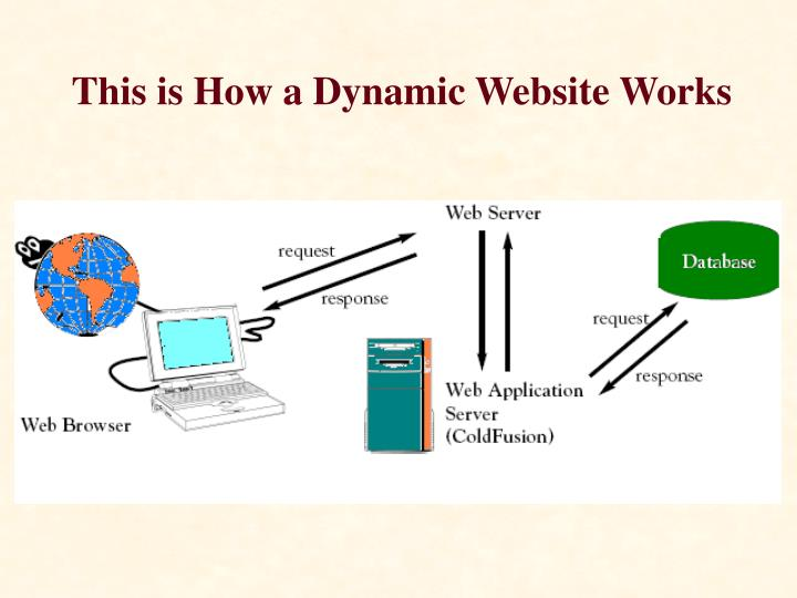 This is How a Dynamic Website Works
