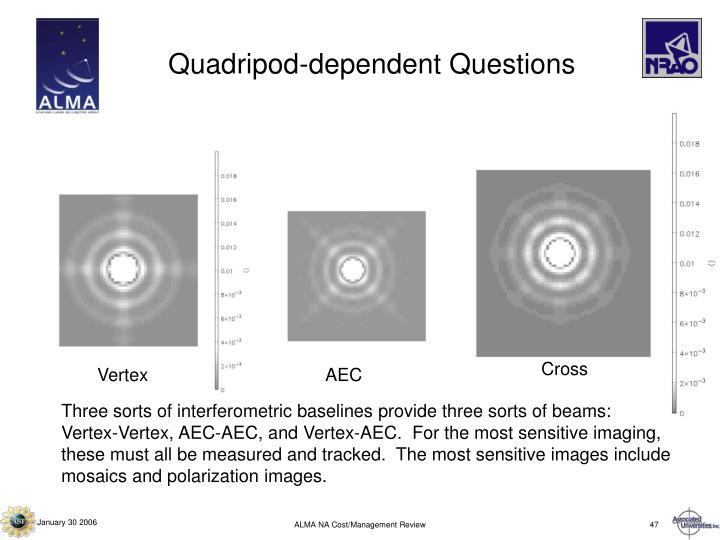 Quadripod-dependent Questions