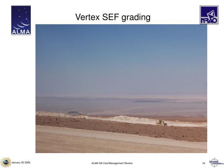 Vertex SEF grading
