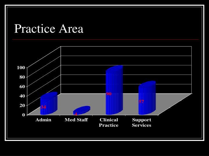 Practice Area