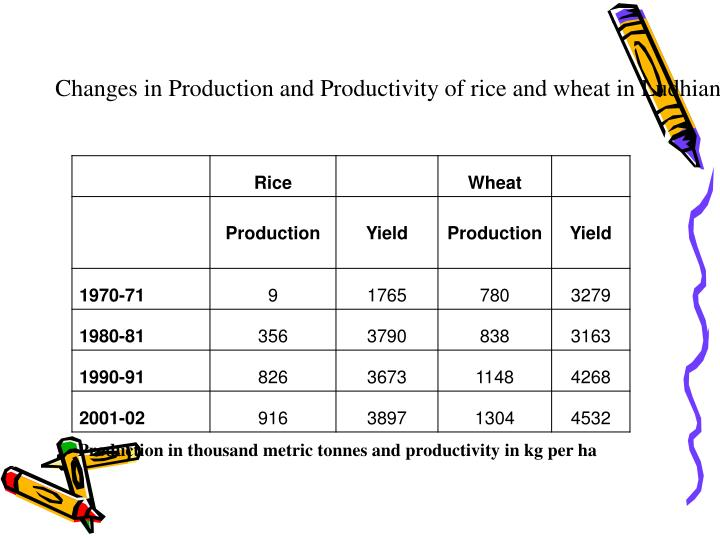 Changes in Production and Productivity of rice and wheat in Ludhiana