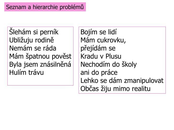 Seznam a hierarchie problémů