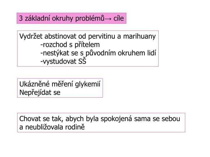 3 základní okruhy problémů
