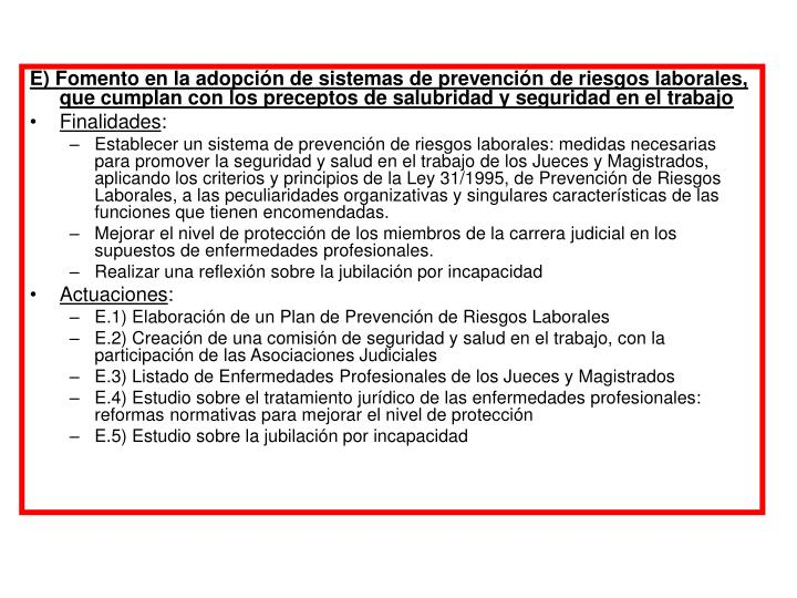 E) Fomento en la adopción de sistemas de prevención de riesgos laborales, que cumplan con los preceptos de salubridad y seguridad en el trabajo