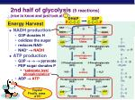 2nd half of glycolysis 5 reactions nice to know and just look at