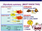 glycolysis summary must know this