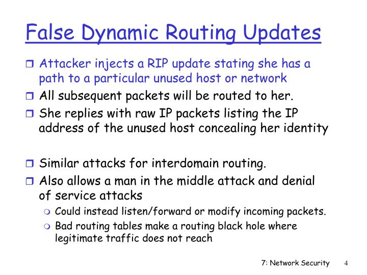 False Dynamic Routing Updates