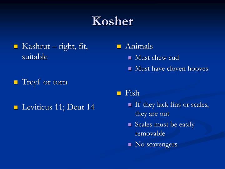 Kashrut – right, fit, suitable