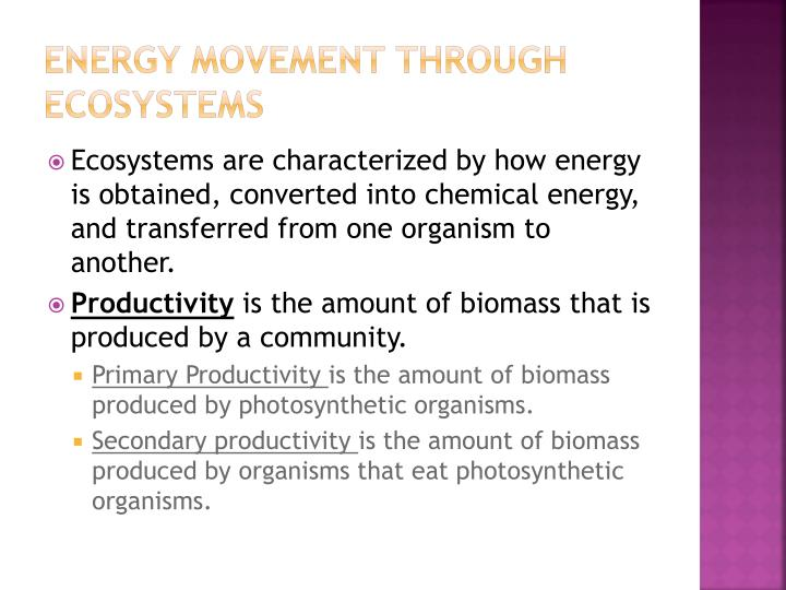 Energy movement through ecosystems