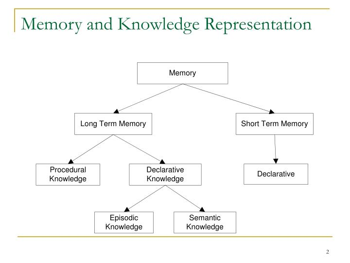 Memory and knowledge representation