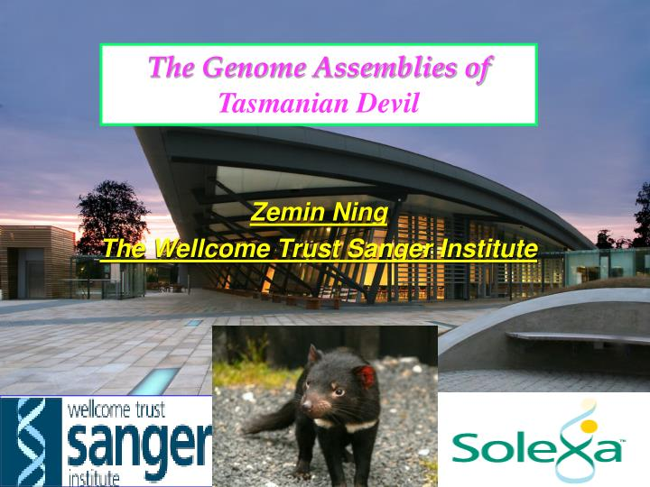 The Genome Assemblies of