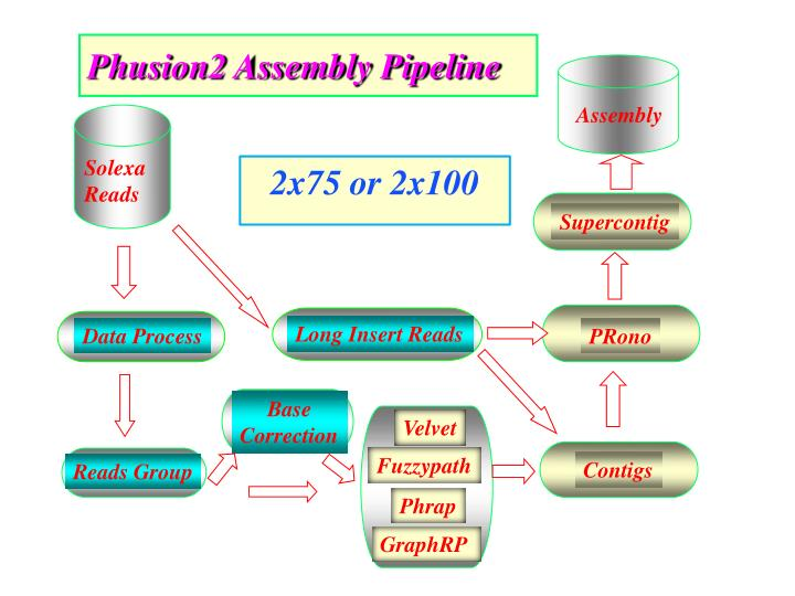 Phusion2 Assembly Pipeline