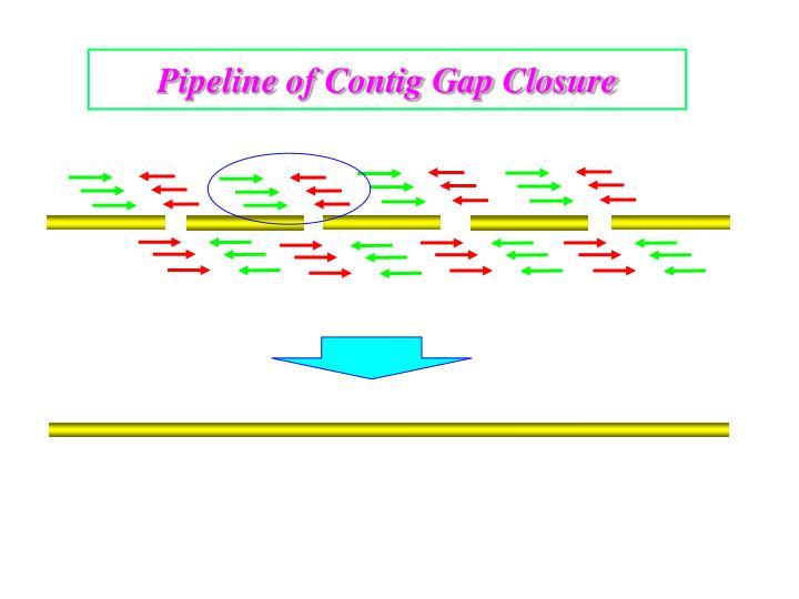 Pipeline of Contig Gap Closure