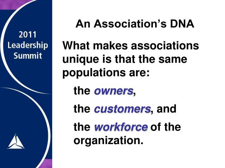 An Association's DNA