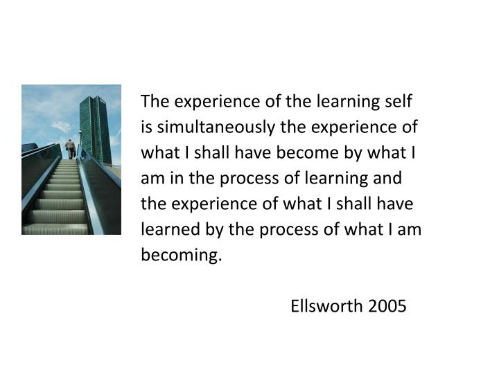The experience of the learning self
