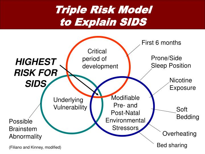 Triple Risk Model