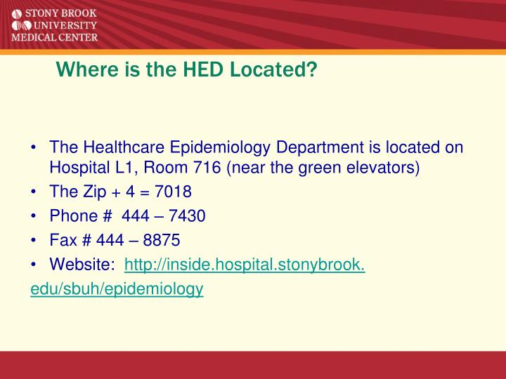 Where is the hed located