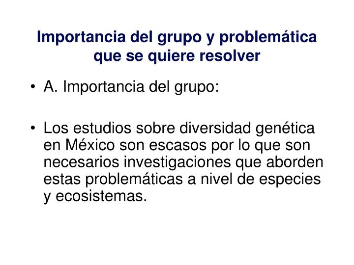 Importancia del grupo y problem tica que se quiere resolver