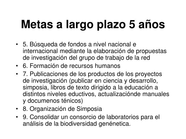 Metas a largo plazo 5 a