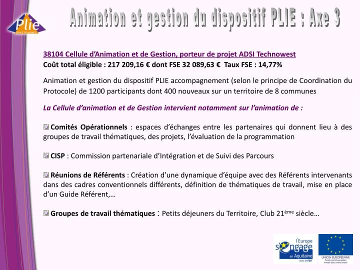 Animation et gestion du dispositif PLIE : Axe 3
