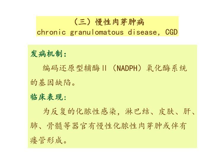 (三)慢性肉芽肿病