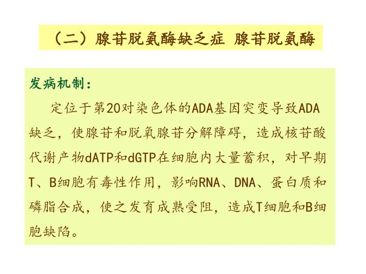 (二)腺苷脱氨酶缺乏症 腺苷脱氨酶