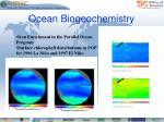 ocean biogeochemistry1