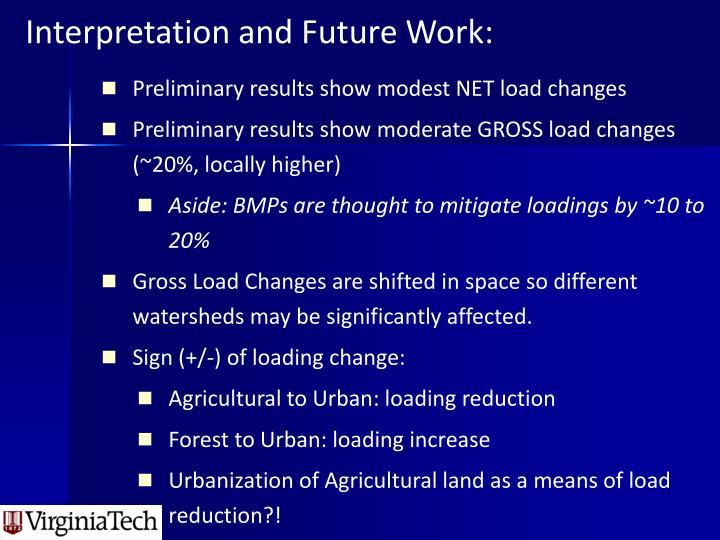 Interpretation and Future Work: