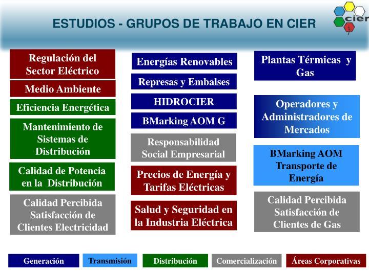 ESTUDIOS - GRUPOS DE TRABAJO EN CIER