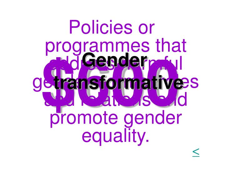 Policies or programmes that address harmful gender norms, roles and relations and promote gender equality.