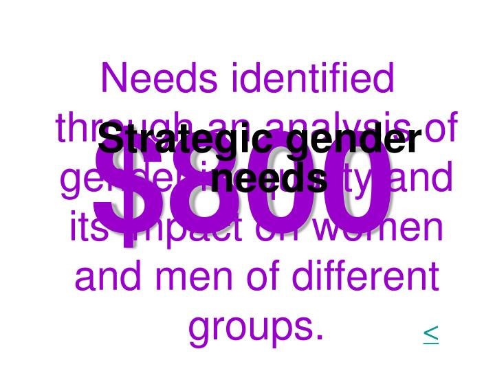 Needs identified through an analysis of gender inequality and its impact on women and men of different groups.