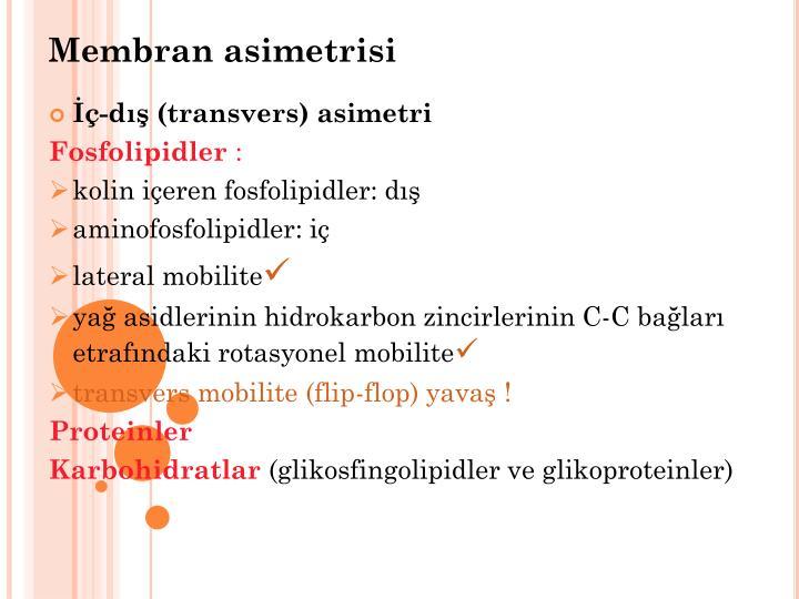 Membran asimetrisi