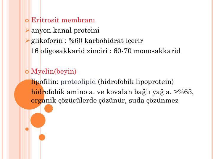 Eritrosit membranı