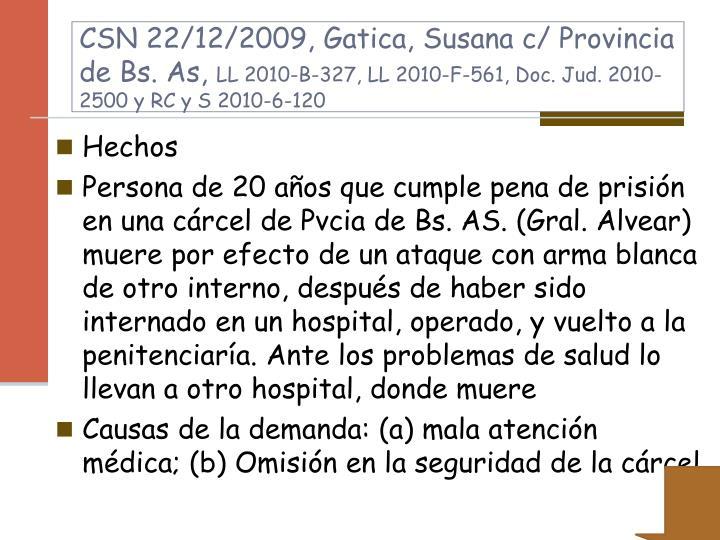 CSN 22/12/2009, Gatica, Susana c/ Provincia de Bs. As,