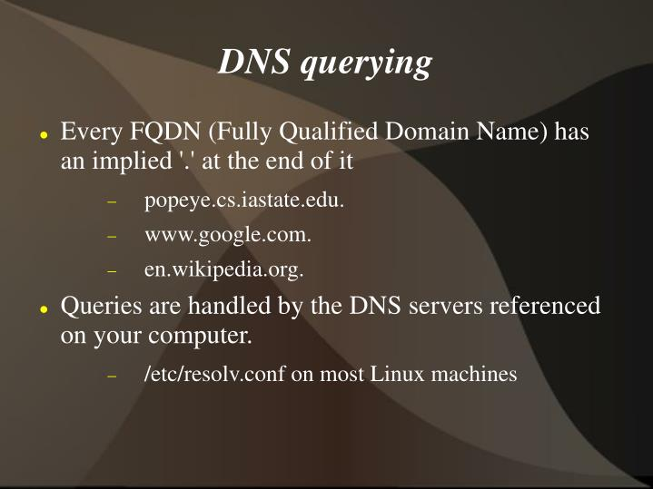 DNS querying