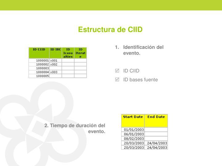 Estructura de CIID