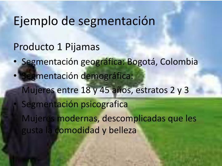 Ejemplo de segmentación