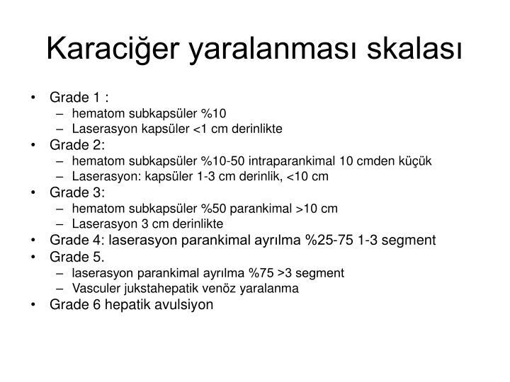 Karaciğer yaralanması skalası