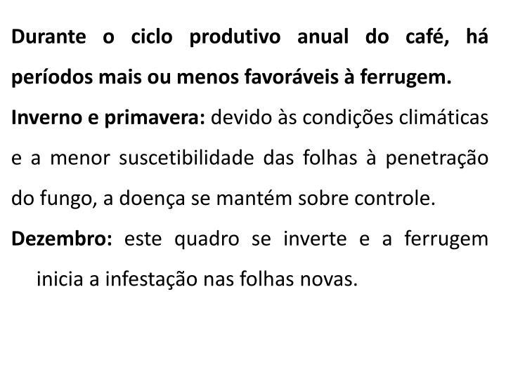 Durante o ciclo produtivo anual do café, há períodos mais ou menos favoráveis à ferrugem.
