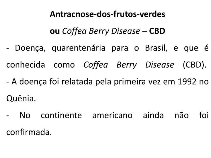 Antracnose-dos-frutos-verdes ou