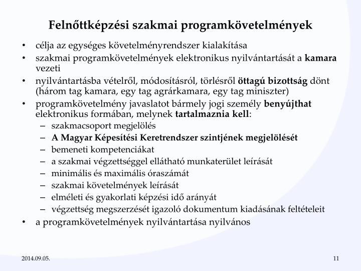 Felnőttképzési szakmai programkövetelmények