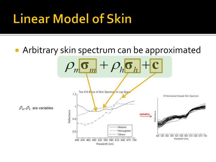 Linear Model of Skin